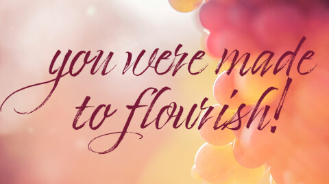 Beth Moore - Made to Flourish